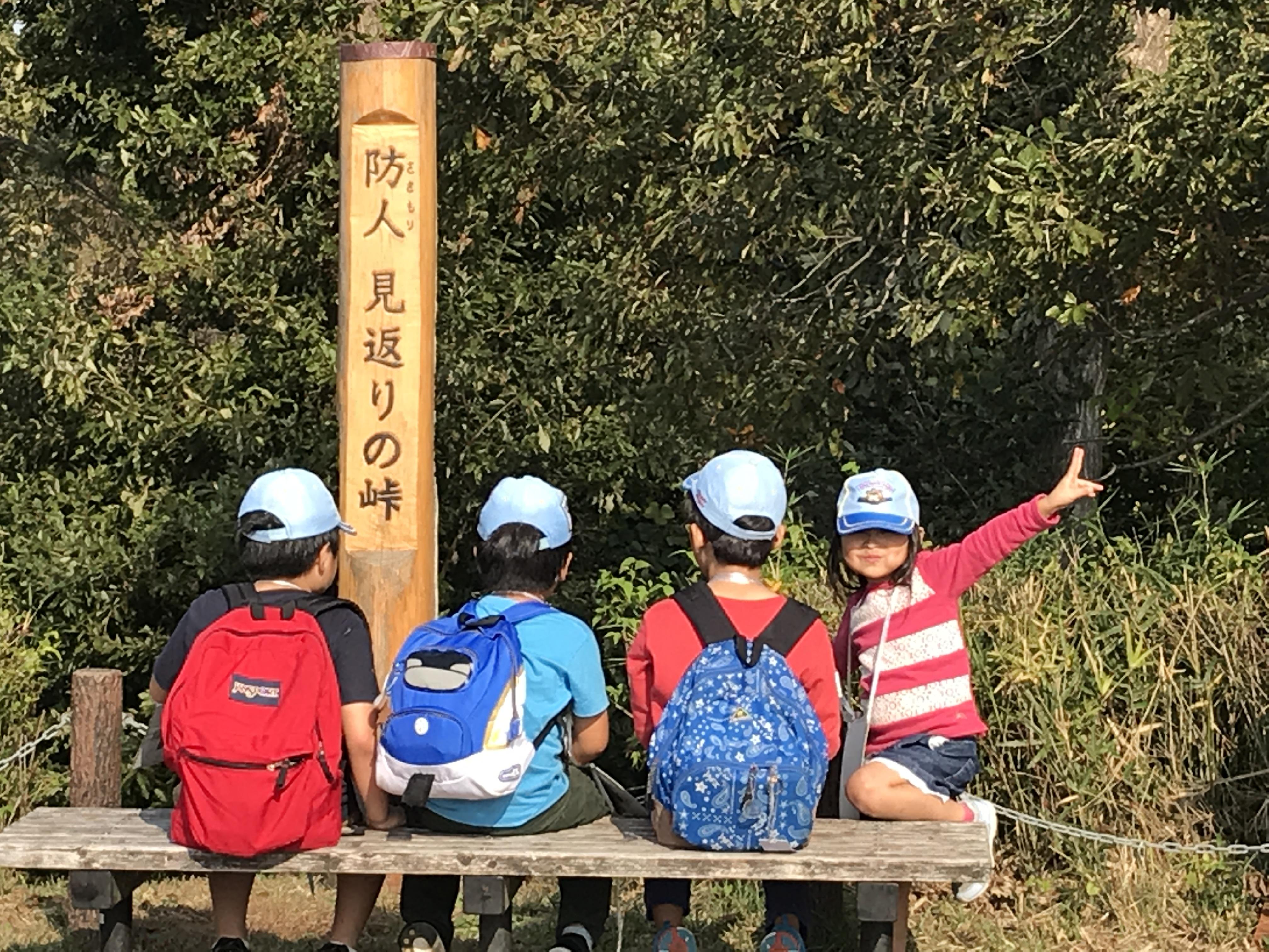 【ビーバー】落ち葉のハイキング